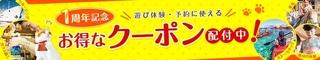 2016 7 じゃらん遊び.jpg