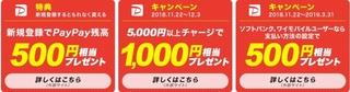 PayPay キャンペーン.jpg