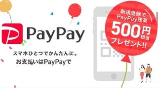 PayPay 新規登録500ポイントプレゼント.jpg