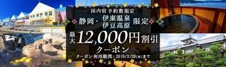 dトラベル 静岡限定クーポン.jpg